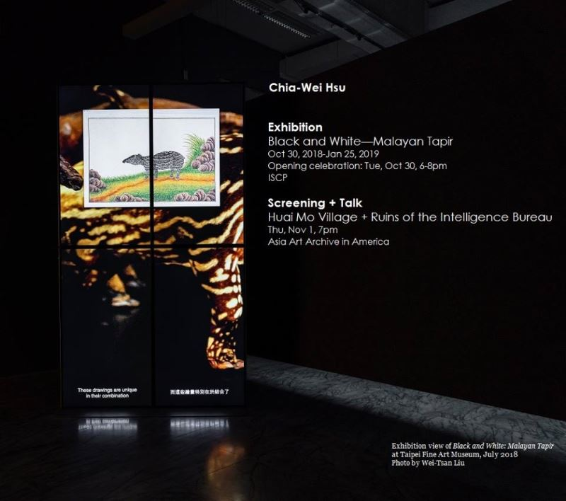 Taiwan video exhibition in New York