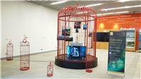 4主題影像展區於國立公共資訊圖書館展出,以象徵鳥籠意象營造當年人權受迫害的荒謬歷史。