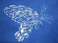 型染-鳳蝶版型設計-線條
