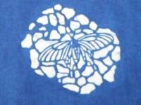 型染-鳳蝶版型設計-綜合技法2
