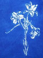 型染-百合花版型設計-綜合技法1