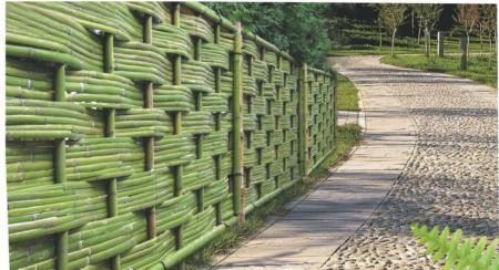 橫排竹片交錯竹籬(竹篾交錯籬)