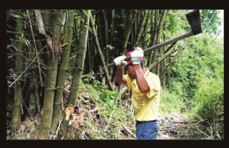 榫接材料-刺竹材料處理