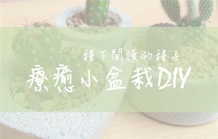 種下閱讀的種子-療癒小盆栽DIY