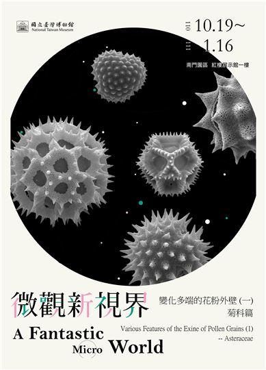 [微型展]微觀新視界 ─ 變化多端的花粉外壁 (一)菊科篇