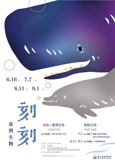 【刻刻‧臺灣生物:抹香鯨/瓶鼻海豚】