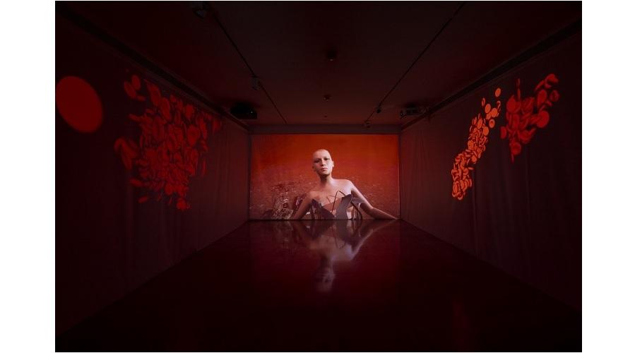 Une exposition en ligne de Shu Lea Cheang  présentée par le MAA de Nice