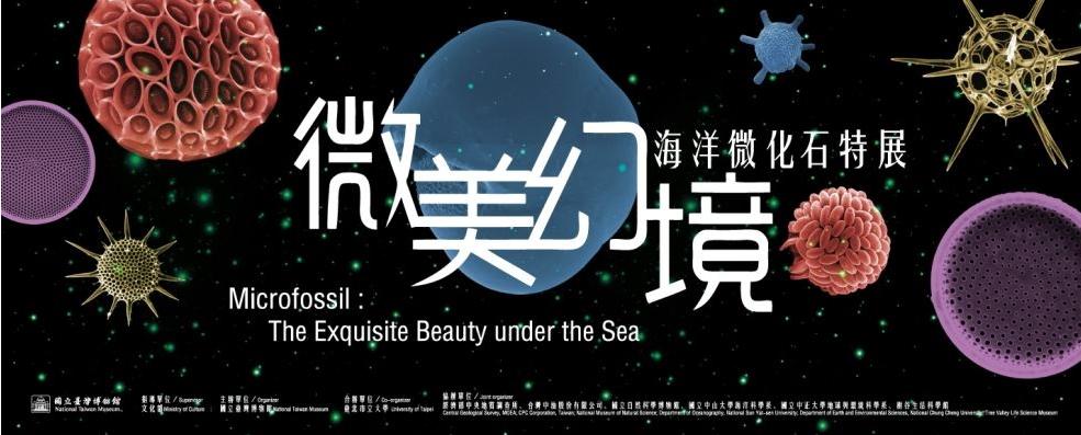 ミクロ化石:海の絶妙な美しさ[另開新視窗]