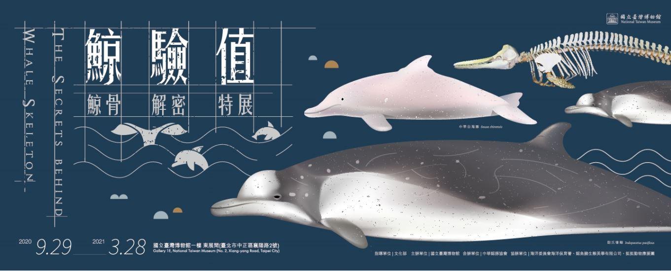 鯨驗值-鯨骨解密特展「另開新視窗」
