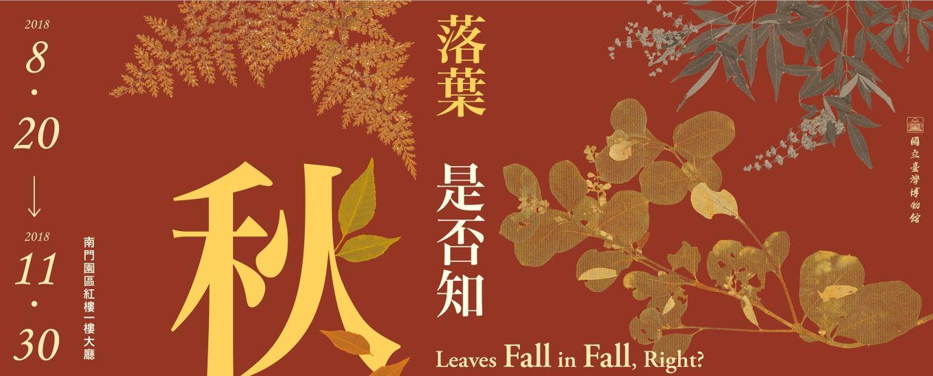 [微型展]落葉 是否知秋