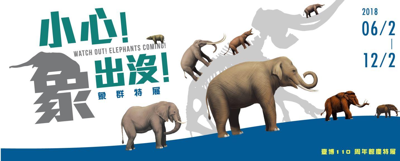 気をつけて、象が来る