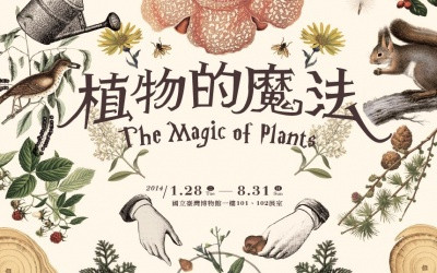 'THE MAGIC OF PLANTS'