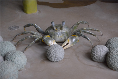 Sand Bubbler Crab and Sand Pellets