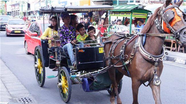 臺灣整體對東南亞文化與社會沒有認識基礎