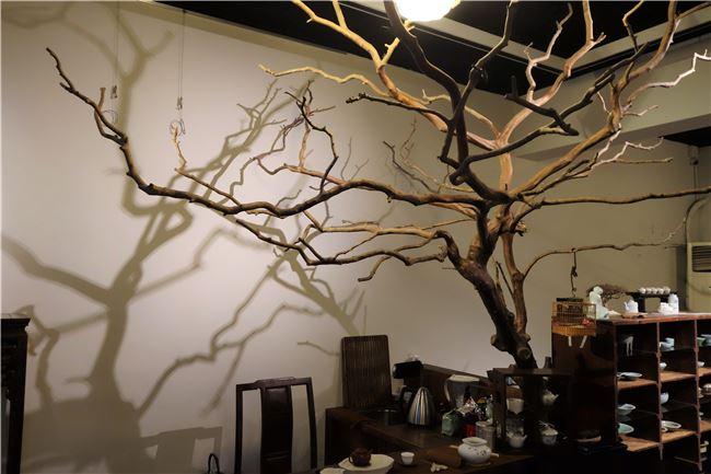懂得欣賞美,生活中俯首即是,例如友人家可惜枯死的樹,就成了老師工作室美麗的一景,光影變化更是動人不已。