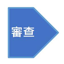 審查(文字)