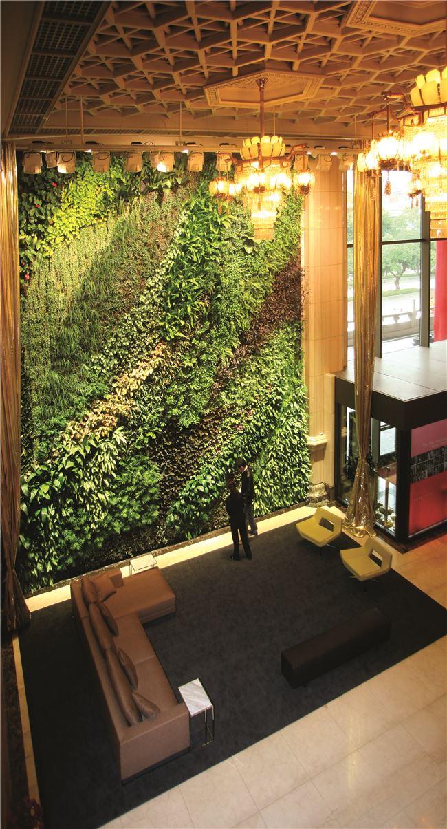 兩廳院綠牆,都是採用臺灣原生蕨類創建而成。