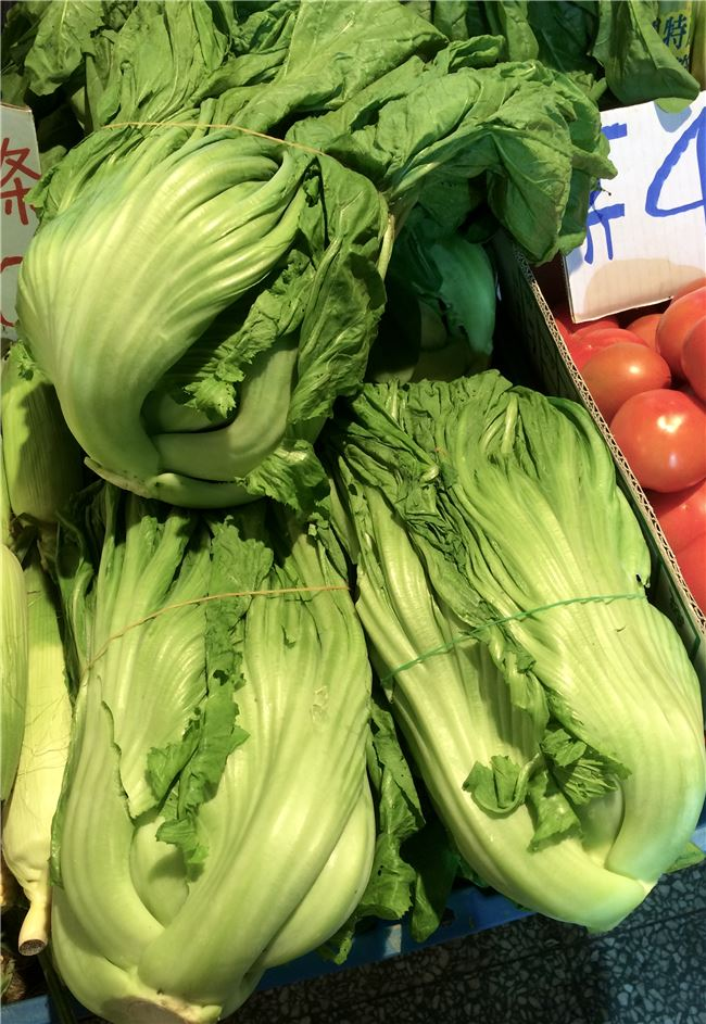 南部客家人的長年菜也是芥菜,應該與客家人善於用芥菜製作各種鹹菜有關。