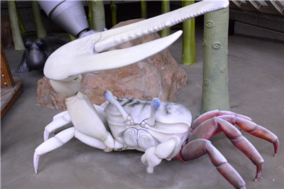 Milky Fiddler Crab