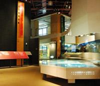自然史廳展示裝置-臺灣的誕生