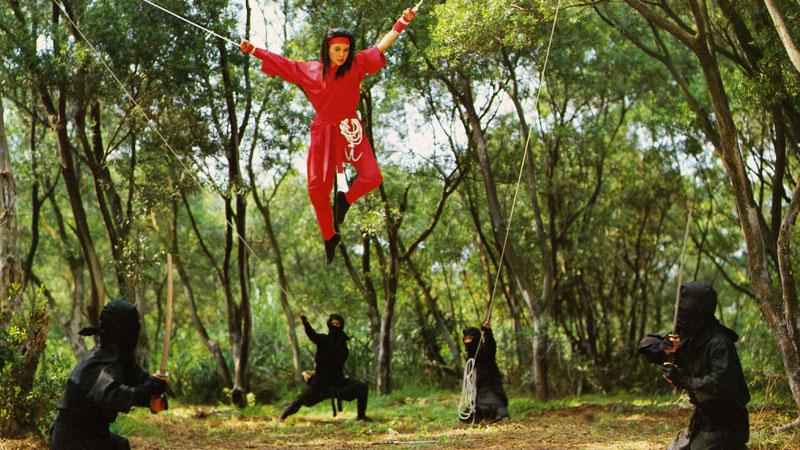The Challenge of the Lady Ninja_Still 6.jpg