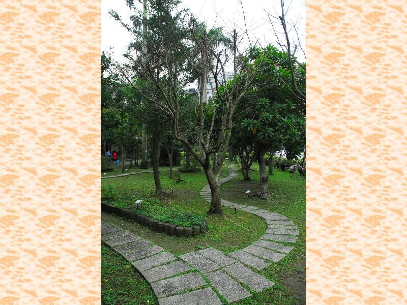 Beauty of Walking Path