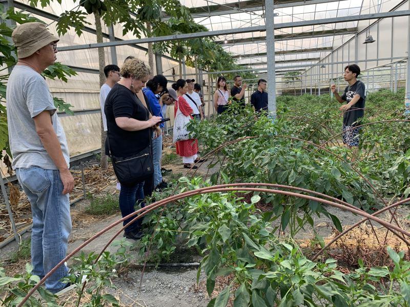 在大溪香草野園溫室園中,顧問們給予體驗食農與環境教育串連具體的建議