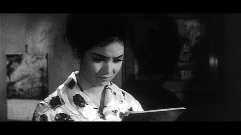 正如十九世紀歐美多部以女性作為主角和書名之寫實主義小說,皆以女人的悲劇經歷來反映現代社會的殘酷及變遷(如《娜娜》、《安娜卡列尼娜》、《包法利夫人》、《嘉莉妹妹》等),本片也以「一位女仕的畫像」的敘事架構,藉秀蘭二張肖像畫訴說她的遭遇,描述台灣五○年代「以農養工」,六○年代農村人口開始移入城市的「都市化」現象,與此一現象對於台灣社會的衝擊。