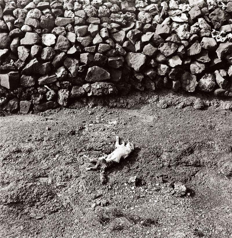 Dingwan, Penghu 1965