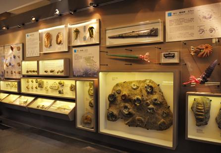 古生物大展-生命的起源展區