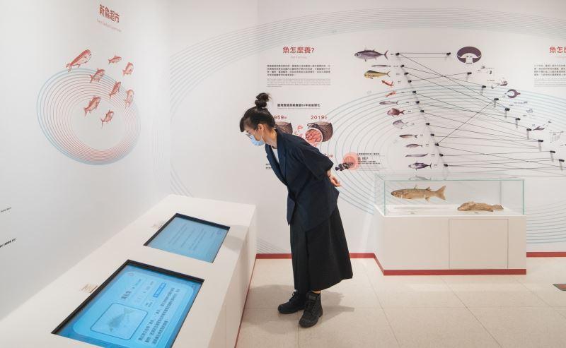 圖3臺博館永續年夜飯特展介紹食物從產地到餐桌的過程