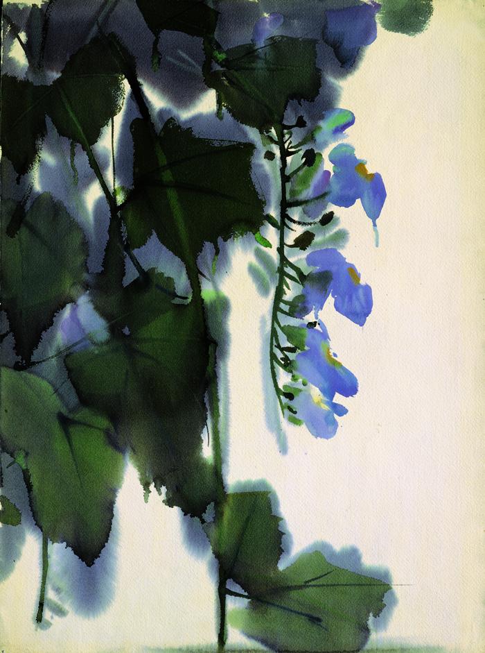 席德進〈紫花〉水彩畫56.5 x 76.0 cm國立臺灣美術館典藏