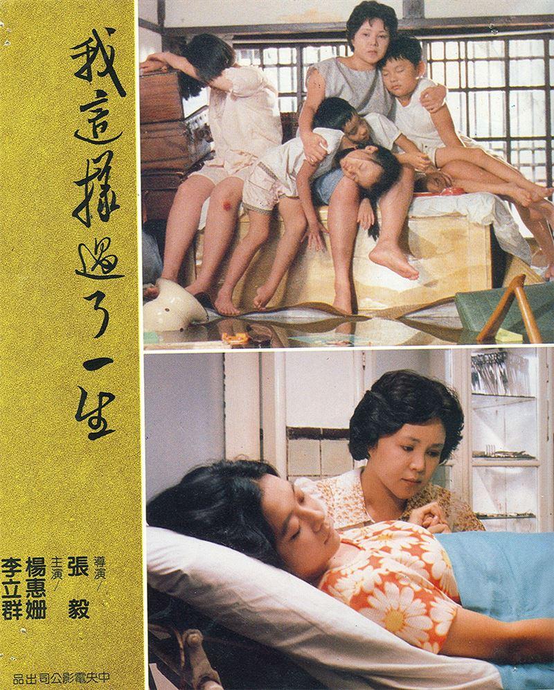從台灣黑電影《錯誤的第一步》(1979),歷經性剝削B級片《女性的復仇》(1981),直到與張毅合作三部曲《玉卿嫂》(1984)、《我這樣過了一生》(1985)、《我的愛》(1986),楊惠姍的身體表演已成經典,涵蓋了女性身體與電影的不同面向與議題。