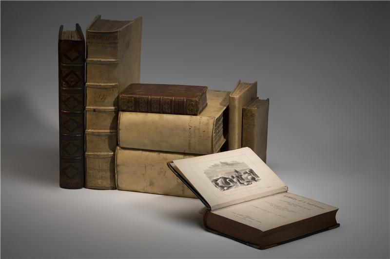 圖書文獻類的西方早期文獻