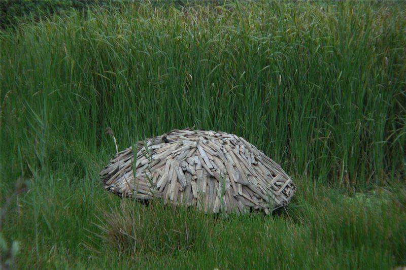 林鴻文〈無題〉2000 海漂牡蠣棚架、廢竹、音響 180×210×50 cm