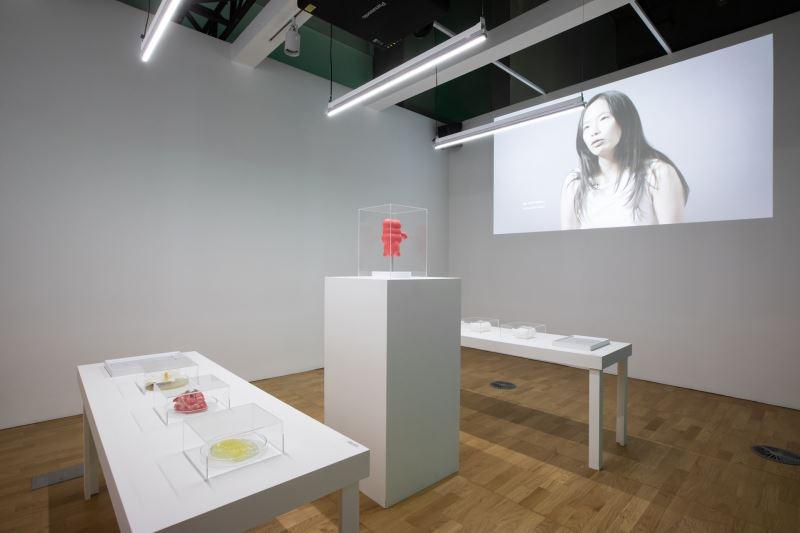 宮保睿,〈闌尾人〉,2019。雙頻道錄像、複合媒材,尺寸依展出場地而定,藝術家提供