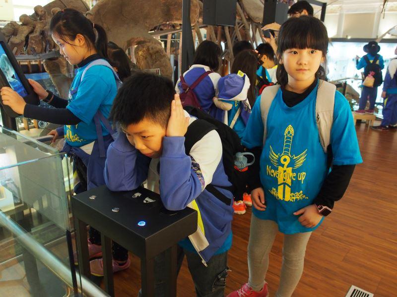 博物館驚奇趣-齒鯨的聲音
