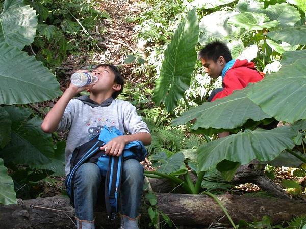 一所山上部落的小學,一個原住民小米田的功課,讓五年級的八度展開尋找小米田的探險行程。在課堂上聽到老師提到小米跟原住民的故事後,八度突然舉手發問,小米是什麼?