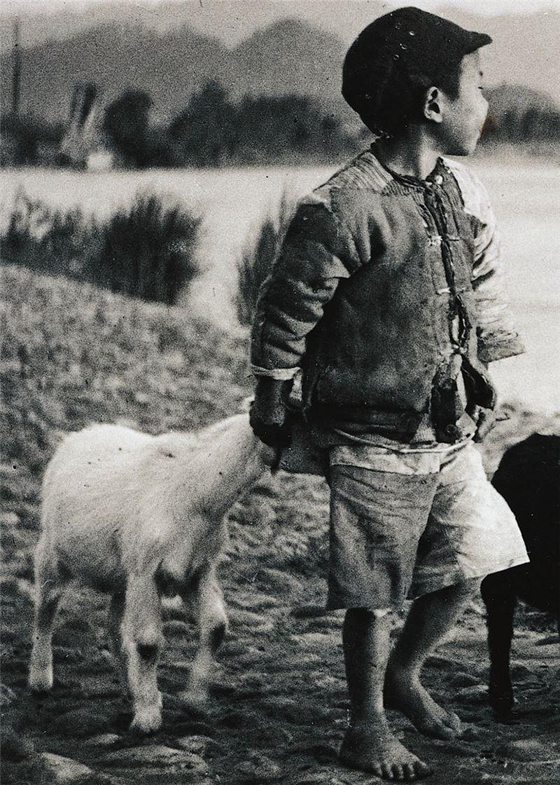 李鳴鵰〈牧羊童〉局部圖