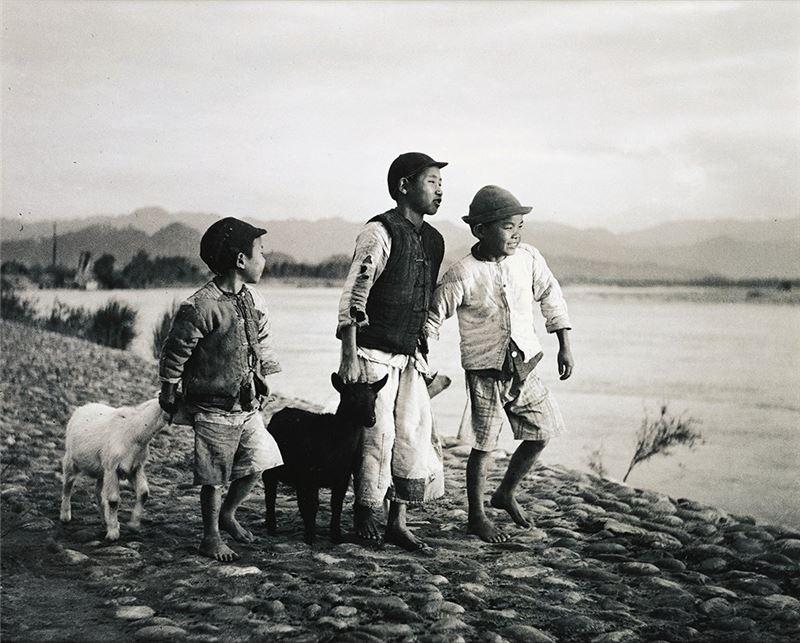 李鳴鵰〈牧羊童〉1947 攝影 43.8×51 cm