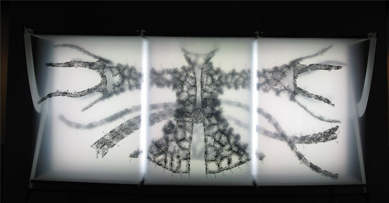 黃心健〈流雲水袖〉2009 金屬架、賽璐珞片 210×170×70 cm