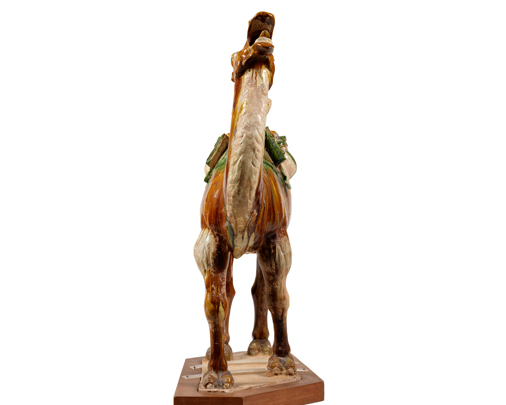 Tri-colour camel carrying rider-Large