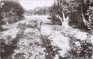 淡水高等女學校花壇