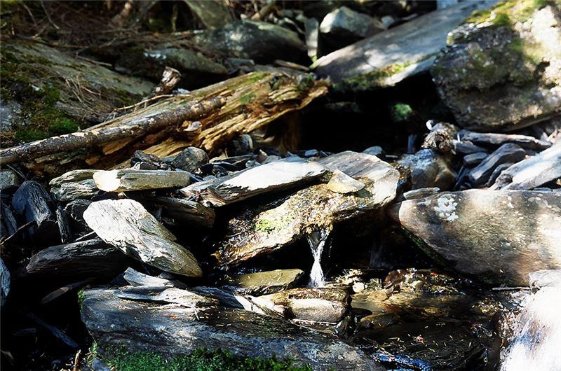 這部紀錄片是公視「我們的島」單元企畫之一,其製作團隊經由北部淡水河、中部大甲溪、南部高屏溪,以及東部秀姑巒溪這四條台灣河流,追溯其自然生態與沿岸人文。秀姑巒溪乃是東台灣的重要河川,從下游到上游,依序是河海交接之出海口、中游平緩的縱谷平原水田地帶以及上游嶔崎發源地中央山脈。由於中游稻田需索新生地與灌溉水,堤防疊加、行水區窄化,加上人口聚居排放家庭汙水、畜牧業廢水、農耕化肥,種種人為因素導致了秀姑巒溪水質惡化、生態漸變,使得這條河流,逐漸失去了原初的生機與美麗……。