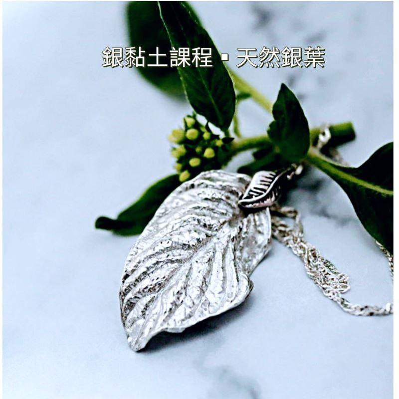 銀土天然銀葉