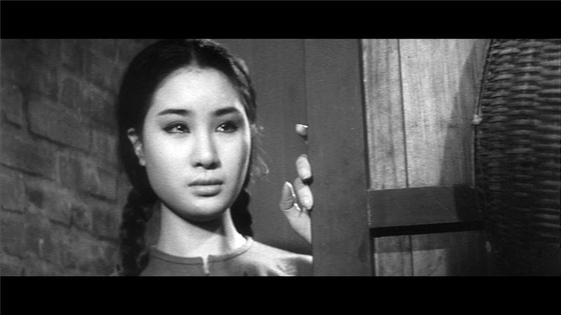 Hsiu-Chin, a young girl growing up at Anping Port, Tainan, falls in love with a Dutch ship's doctor, Daley, and gets pregnant.