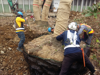 新建庫房基地植栽移植作業