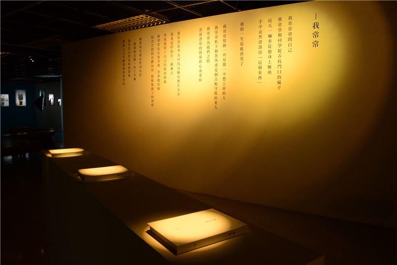 國美館「人艱不拆」展場 (1)