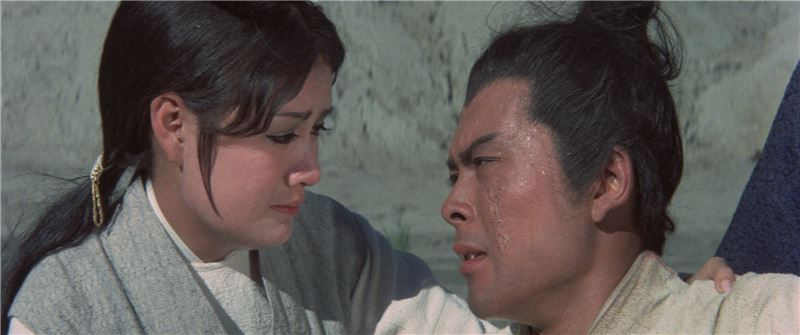 As young Er-Hu begs outside a run-down temple, Miss YUN of the Zhang's Village gives him a white jade pendant. That night, the jade pendant is stolen as Er-Hu's mother is murdered by the thief. Ten years later, Er-Hu has become a warrior renowned for fighting injustices and protecting the weak.