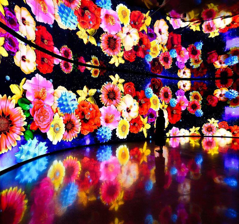 圖4友達微美館打造全台最大556吋顯示器拼接牆,呈現前所未見的視覺饗宴